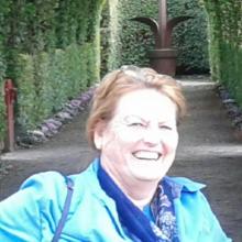 Pam Louman Meijer